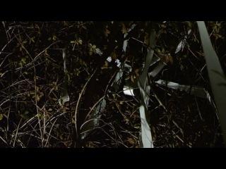 Чудовищная ночь (2014) лучшие фильмы ужасы, триллер